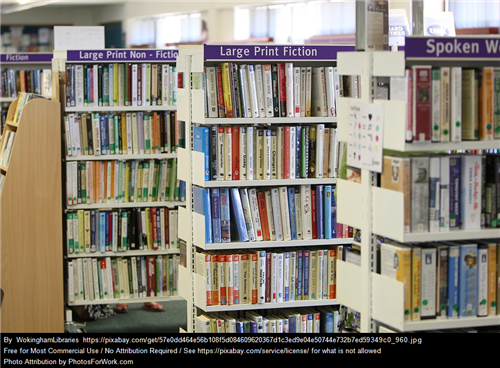 Library shelves containing different collections