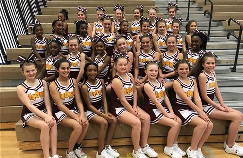 Picture of 2017-2018 Cheer Team
