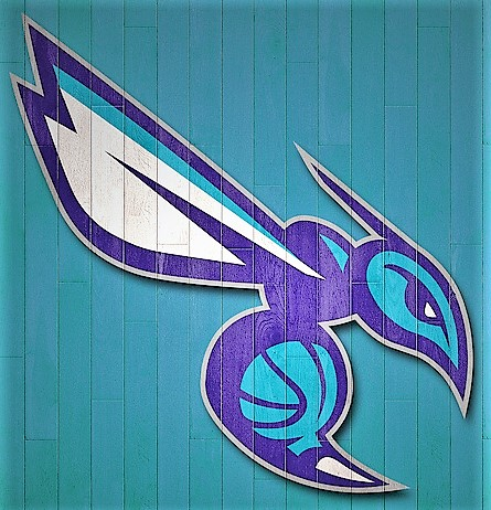 Purple and blue Charlotte Hornets Mascot